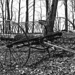an old metal hay rake with barren fall trees in the background