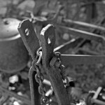 the detail of old farm machinery