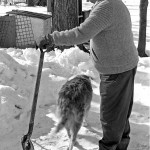 winter scene with snow and the standing body of an older man leaning on a shovel, the backend of a dog walking away behing him